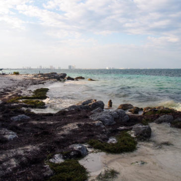 Why I Thought I Would Hate Cancun… And Why I Absolutely Loved It